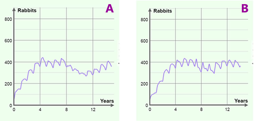 rabbit_graphs